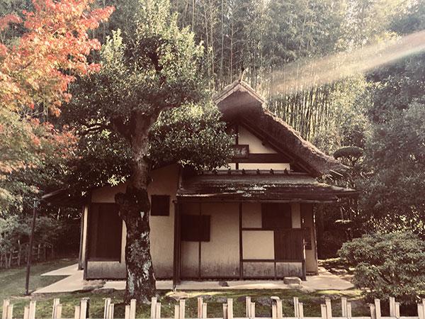 Okayama-herfst-IMG_E9260